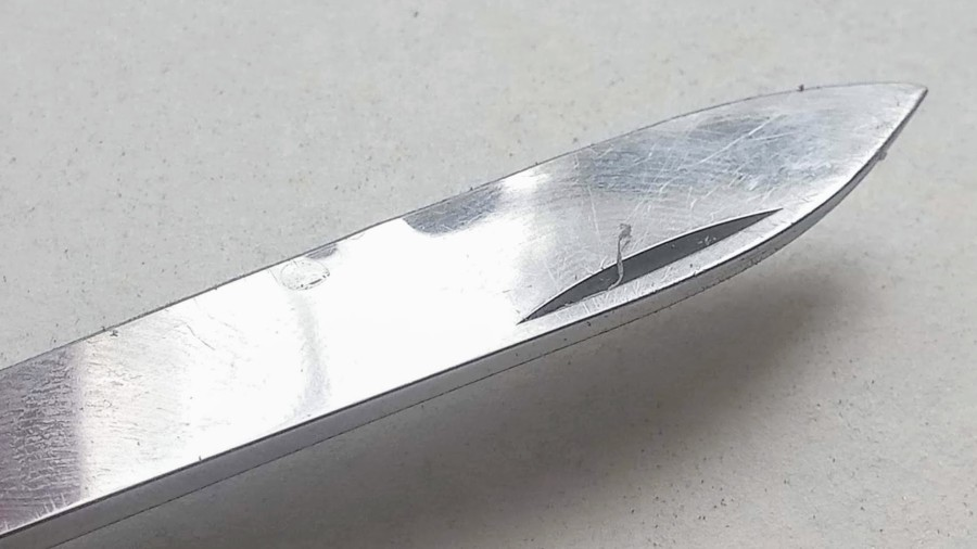 Bumps Visible Along The Edge Of The Large Blade